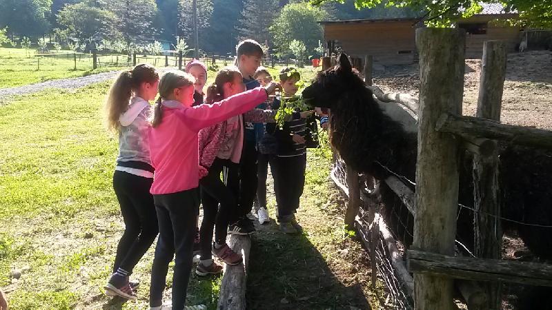 Práve prezeráte fotografiu z galérie: Škola v prírode - Tralaland